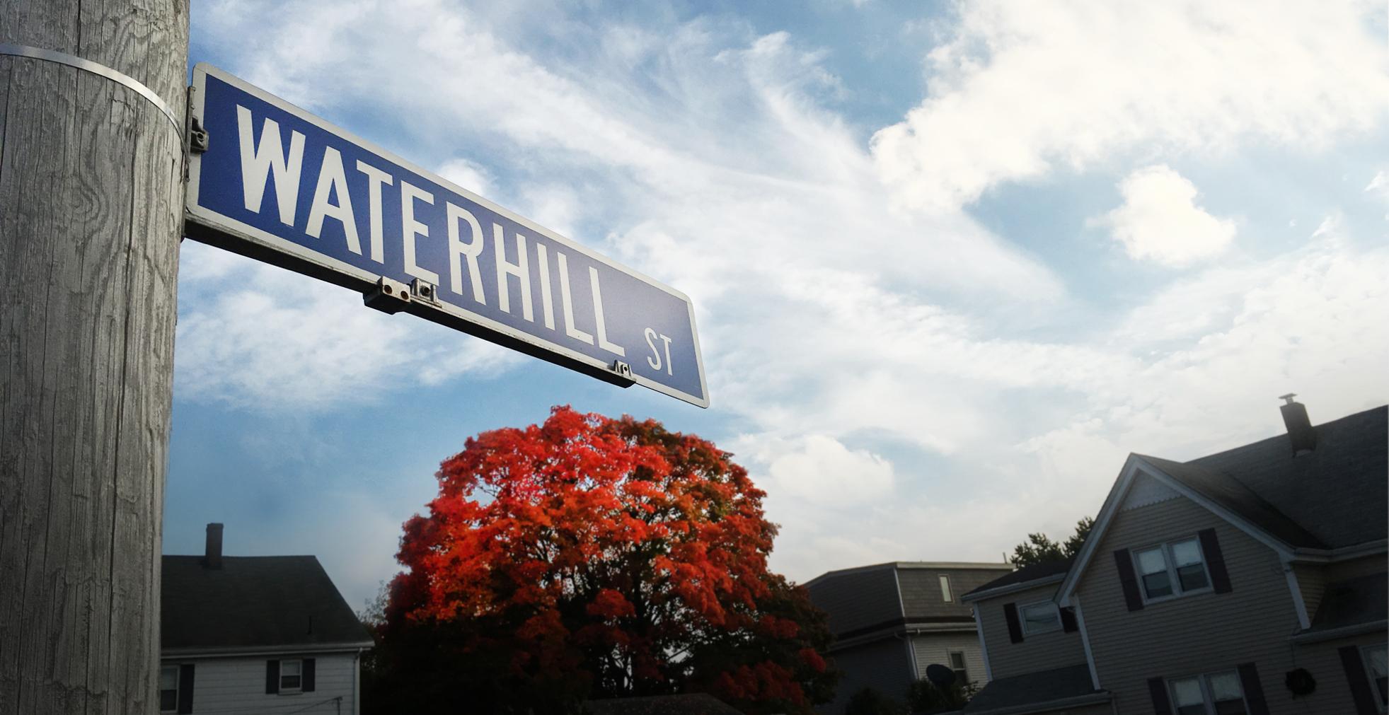 Waterhill Street Landscape